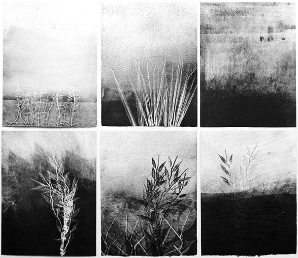 Yannick De Serre, Petits paysages racontés